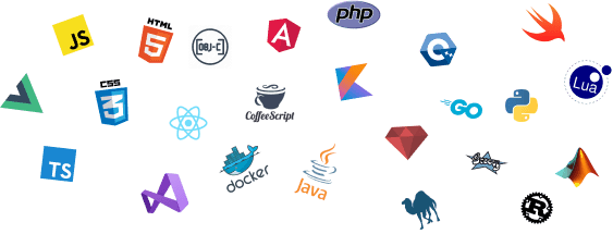 A collection of programming languages like JavaScript and PHP